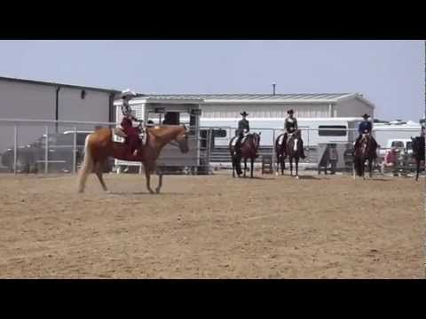 Excellent horsemanship example