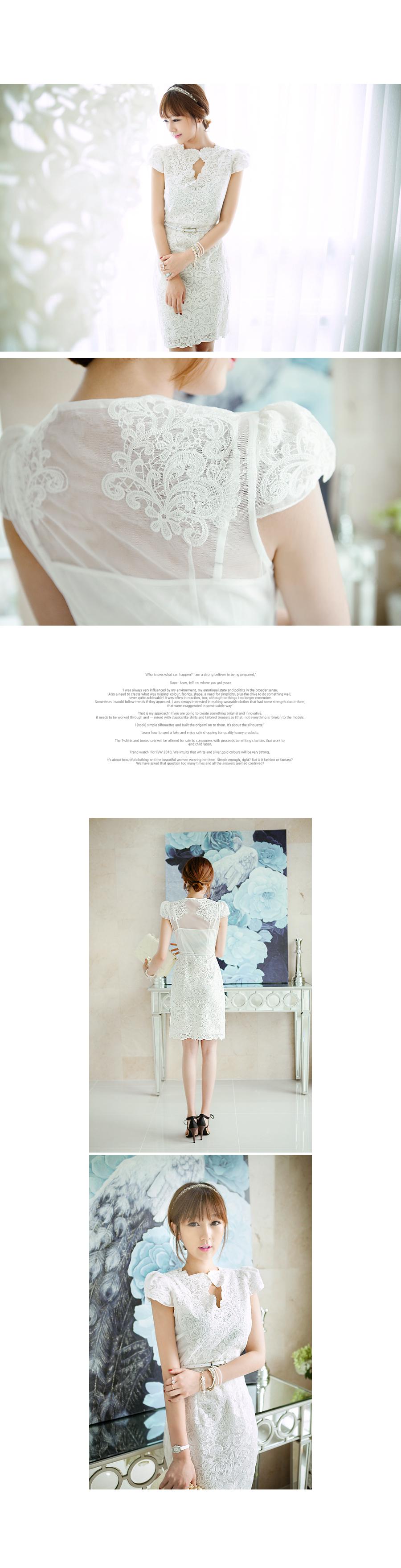 Mesh-Back Lace Sheath Dress - TISVIN | YESSTYLE