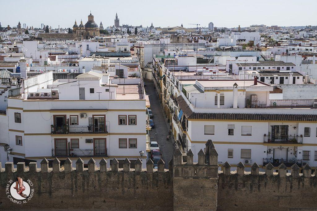 Miradores De Sevilla Hotel Macarena Miradores Sevilla Vistas