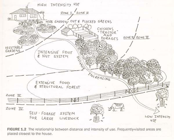 "By Bill Mollison from his book, ""Permaculture: A Designer"