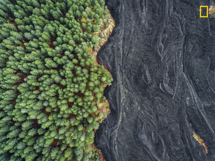 Italy trees landscape aerial view forest lava