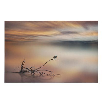 Small bird sitting on a root - photo impression. faux canvas print