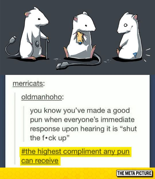Funny Compliment Quotes. QuotesGram |Funny Pun Compliment Quotes