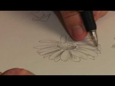 Drawing Lessons : How to Draw a Flower