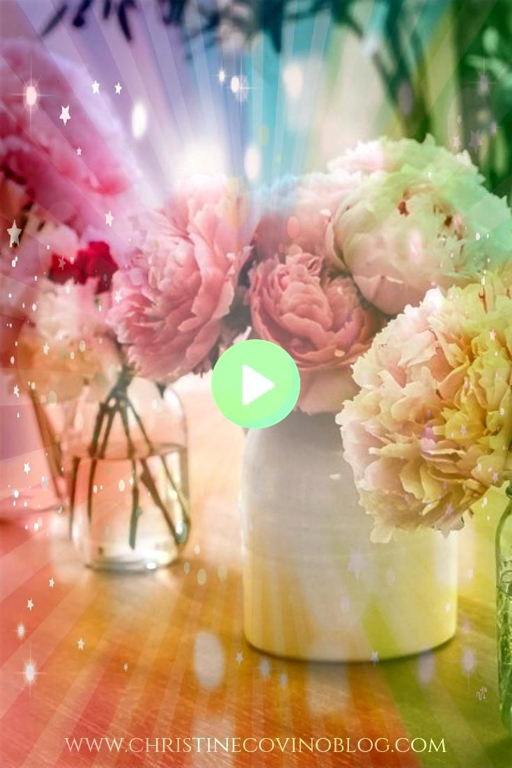 to grow and harvest peonies Here is your complete guide to growing and harvesting Peonies so that you can have beautiful Peonies year after year Peonies are actually very...