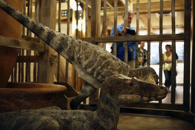 Dinosaurs on display in a cage at the Ark Encounter in Kentucky. The creationist behind the attraction claims dinosaurs and man lived together. Sigh...