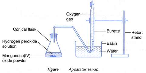 Effect Catalyst Rate Reaction Experiment 2 Reactions Chemical Reactions Experiments