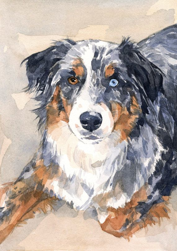 Chien Aquarelle Portrait Animal Realiste 5 X 7 Watercolor Dog