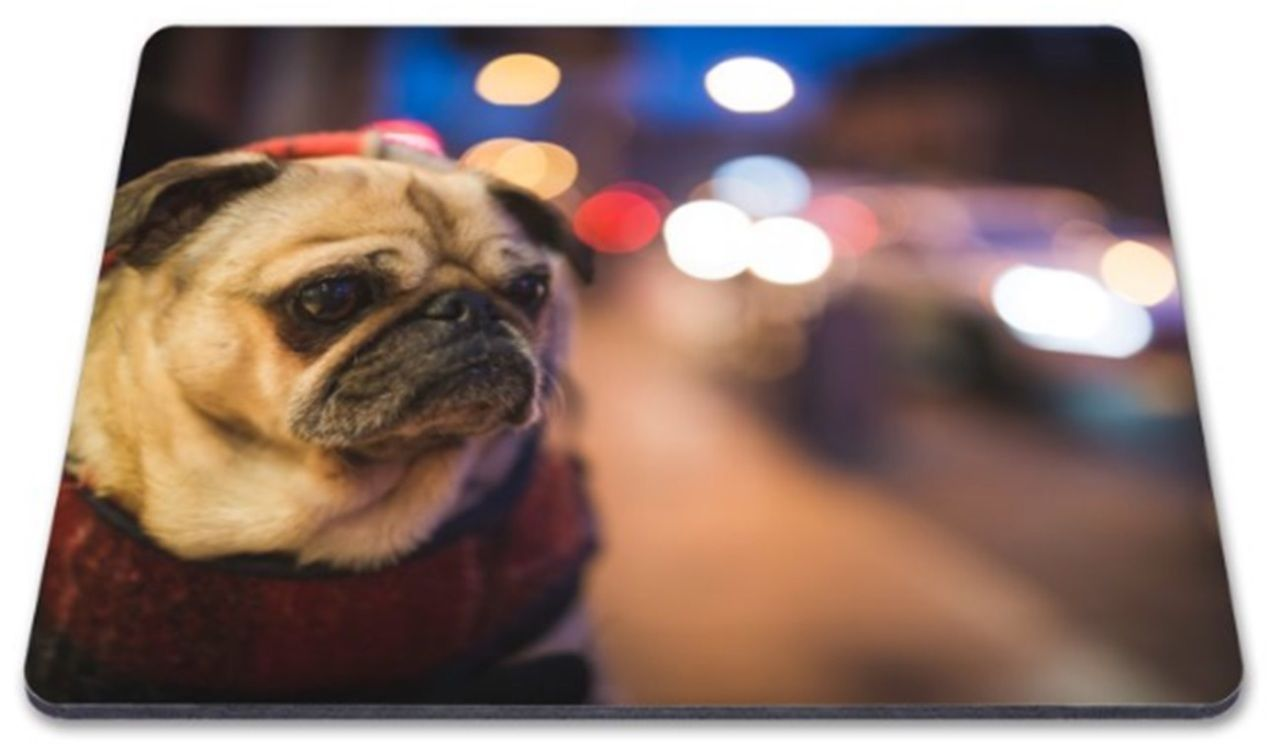 Cute Pug Mouse Mat Available At Www Ilovepugs Co Uk Post Worldwide