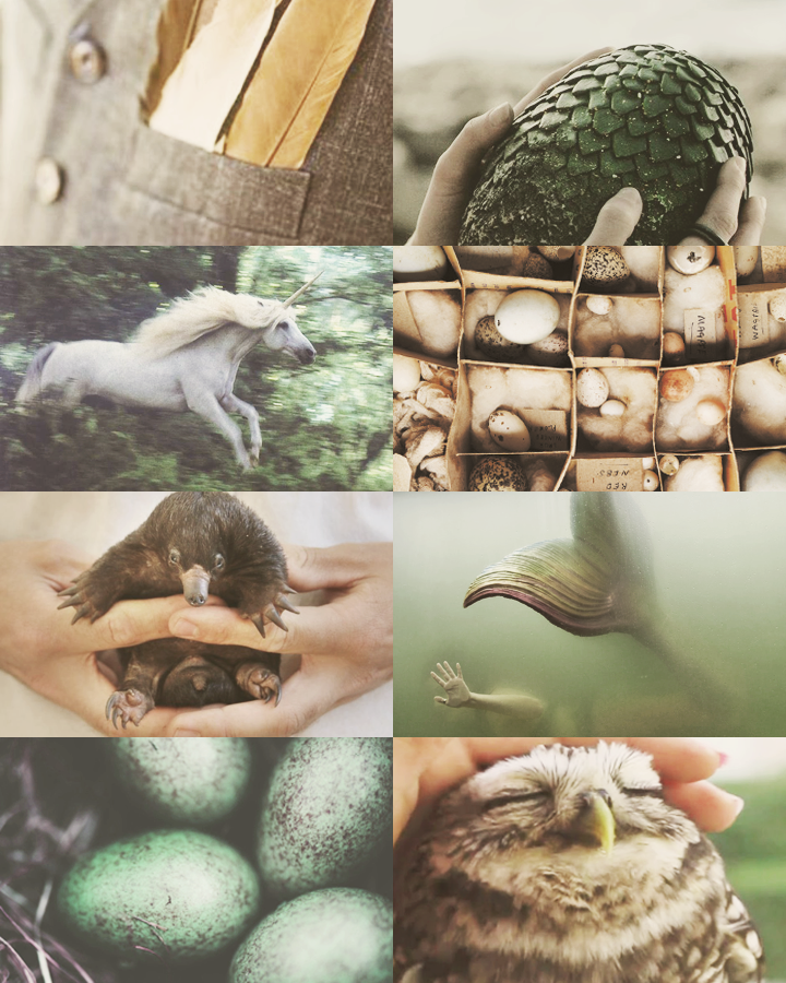 Care of Magical Creatures Magical creatures harry potter