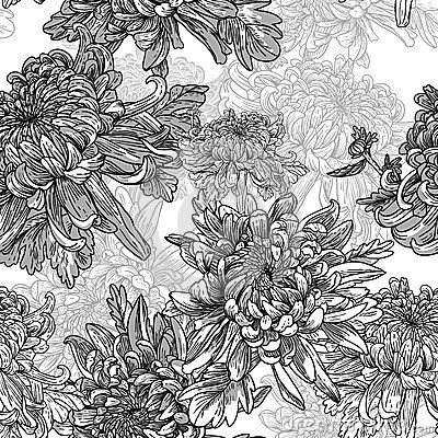 Black And White Background With Chrysanthemums Black And White Background White Pattern Background Flower Drawing