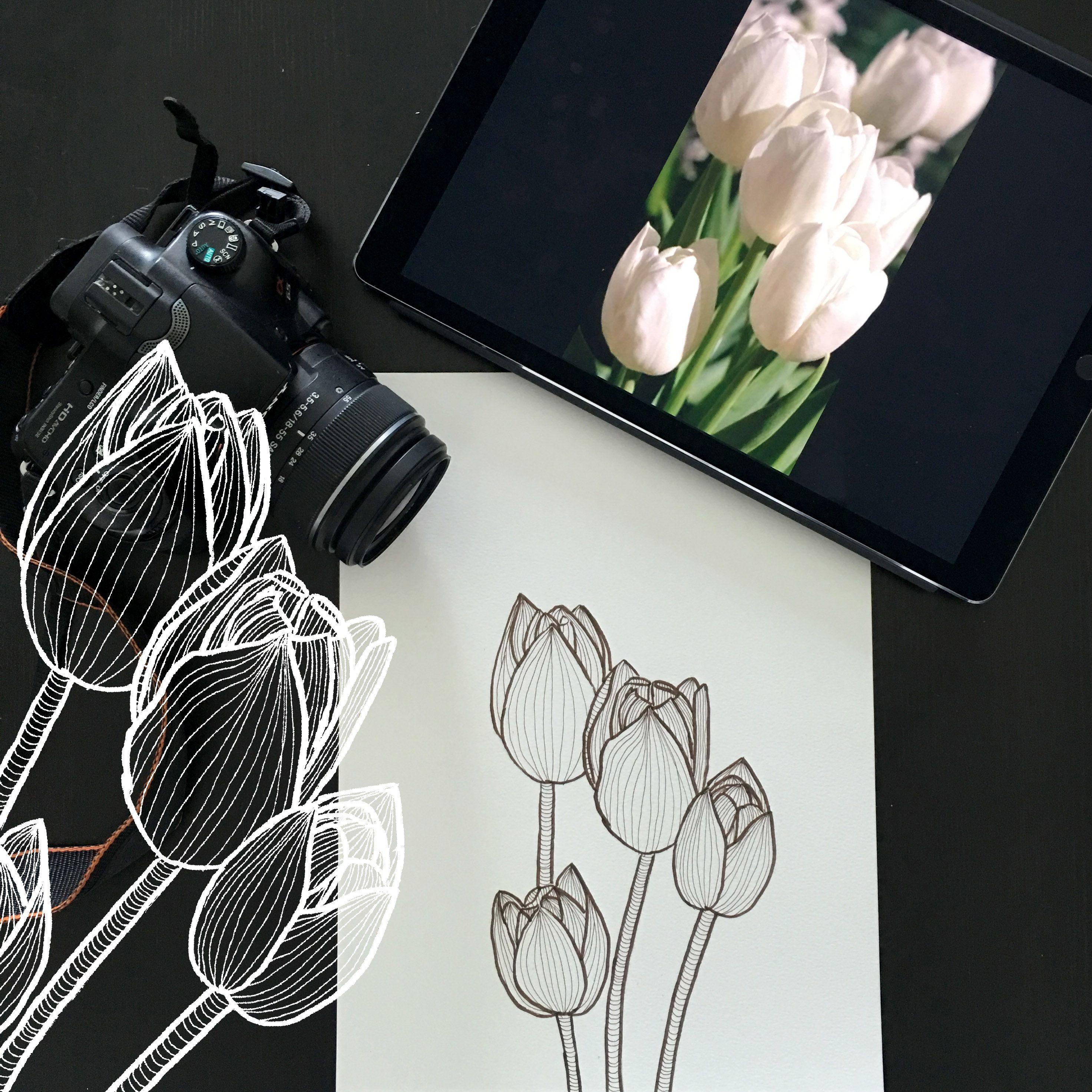 Day 24 #30ideas30days #illustration #flowers #blackandwhite #drawing #patternly.design #30ideias30dias #ilustração #flores #pretoebranco #desenhoobservacao #decolalab2016 #oficinaamandamol
