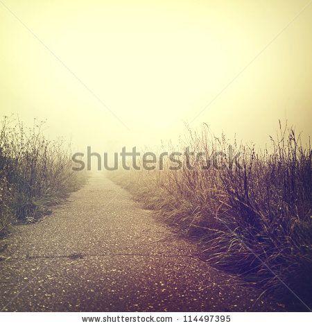 Vintage Nature Background Stock Photo
