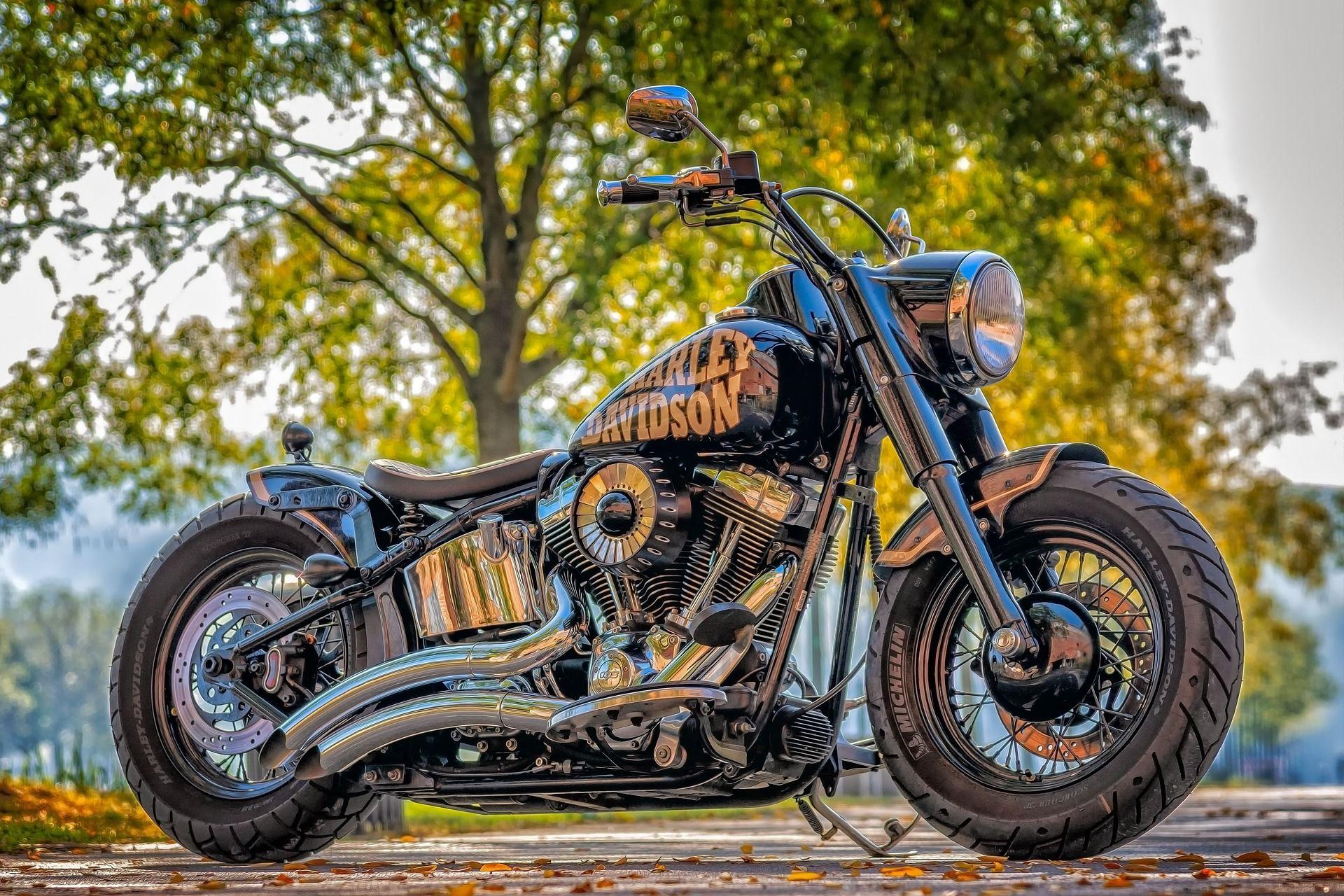 Wallpaper Harley Davidson Motorcycle Side View 3840x2160