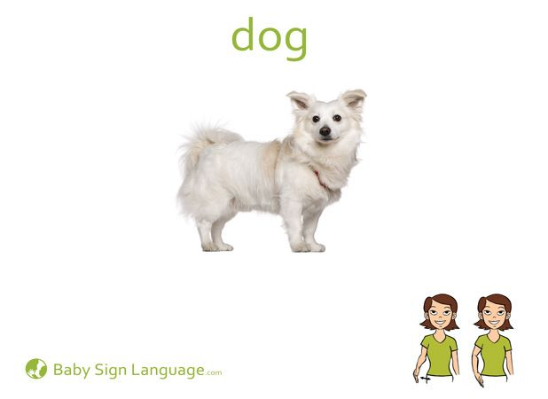 This is an image of Geeky Asl Animal Signs Printable