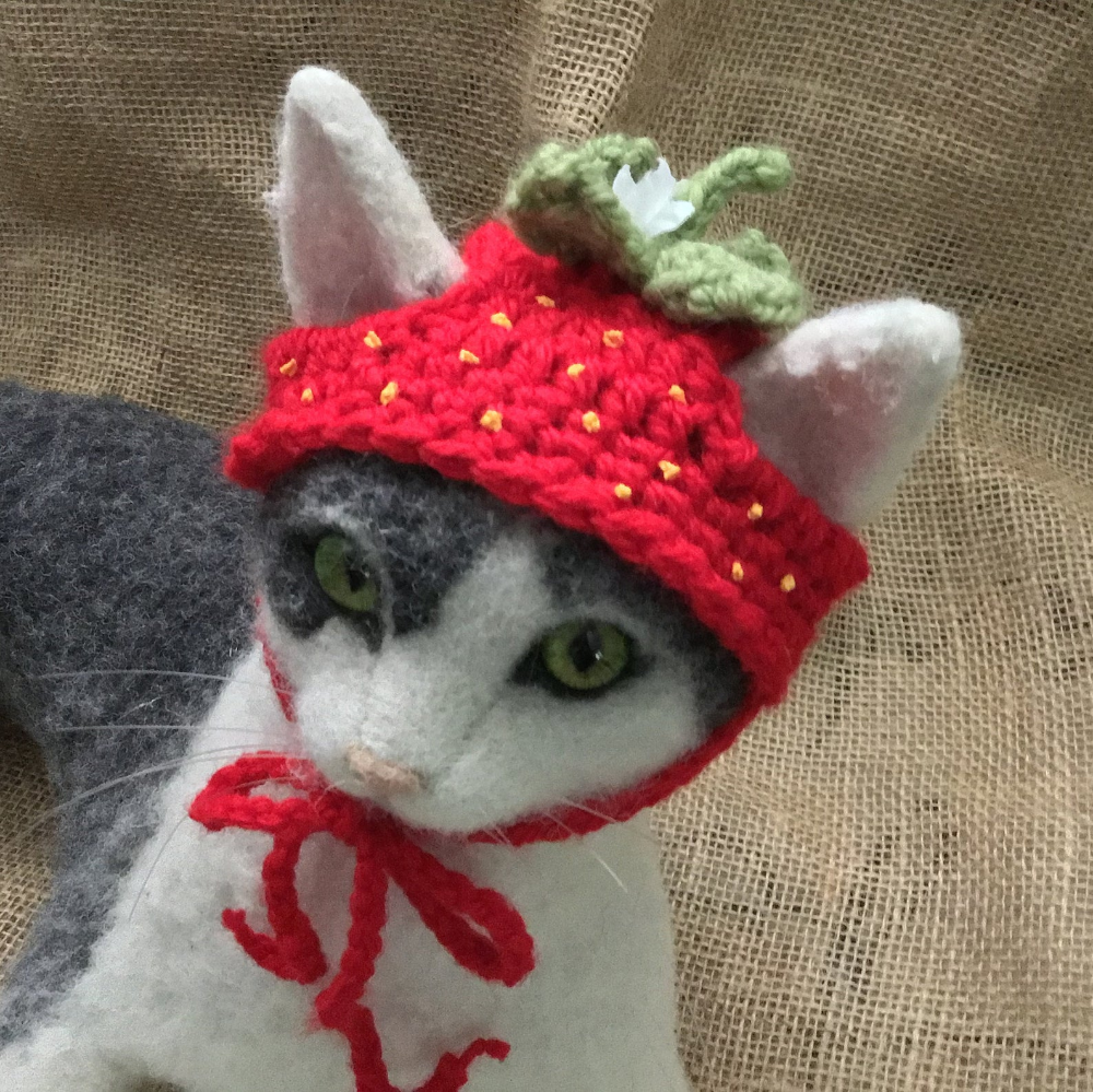 Strawberry, hats for cats, cat hat, cat costumes, cat