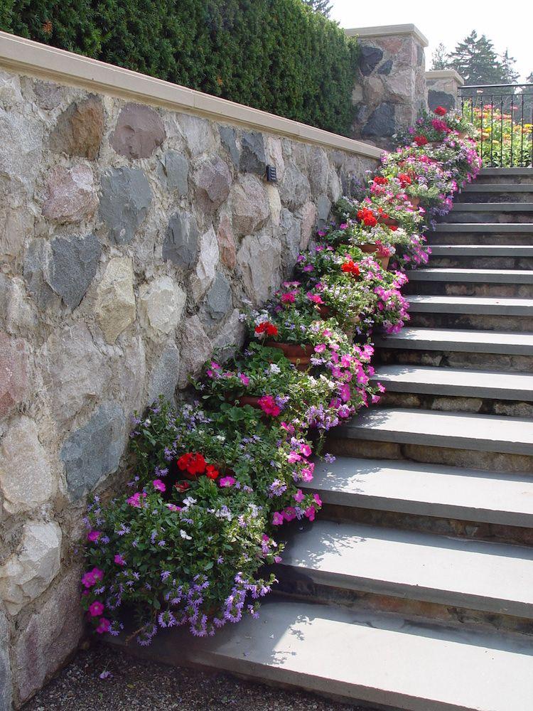 escalier de jardin en pierre et béton, pétunias multicolores ...