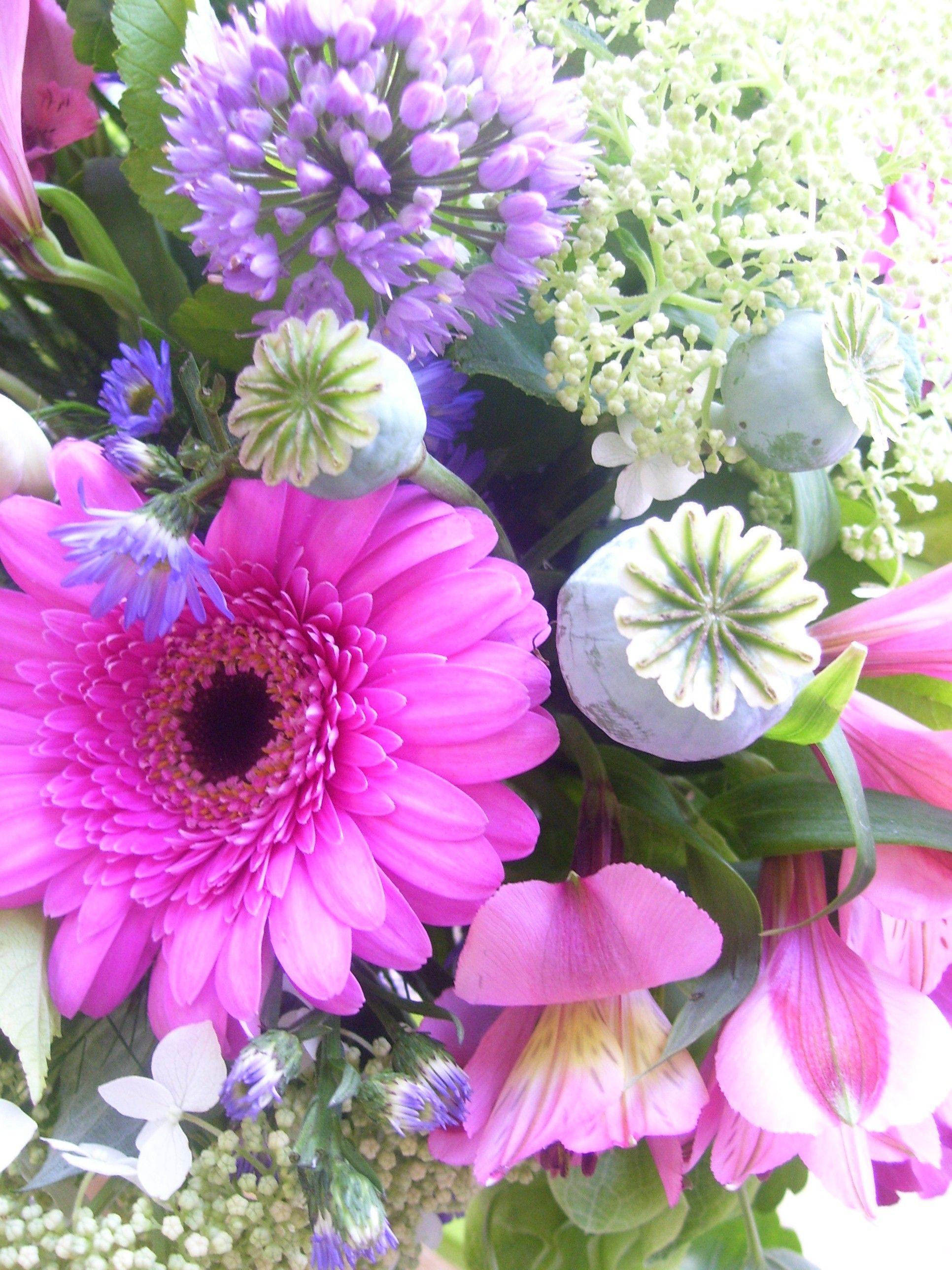 Gerbera Daisy Queen Anne S Lace Poppy Pods Allium Roberts