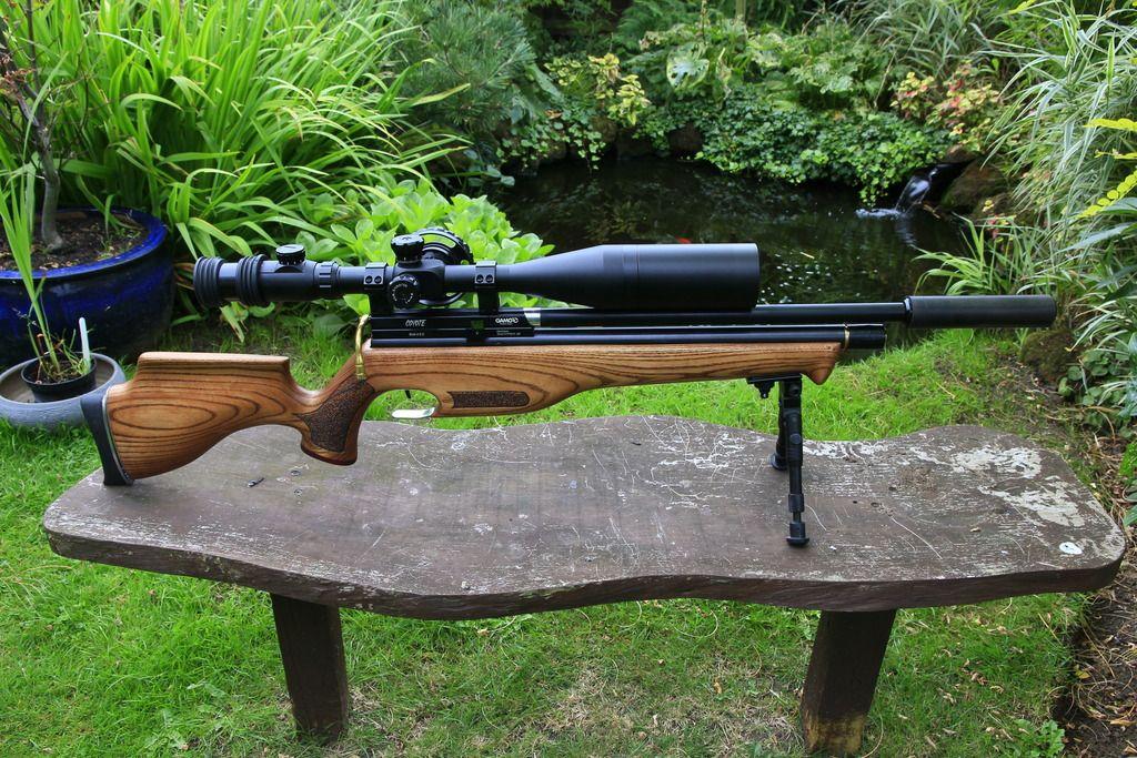 Gamo Coyote   Air rifles   Air rifle, Guns