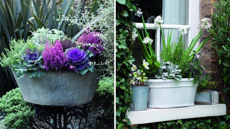 Des jardini res fleuries et color es m me en hiver for Plante terrasse hiver