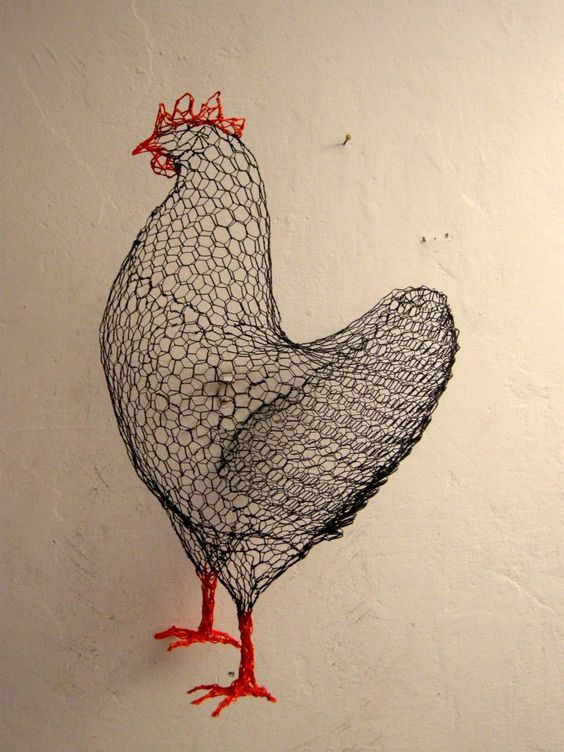 With Chicken Wire Just About Anything Is Possible People Have Been Using