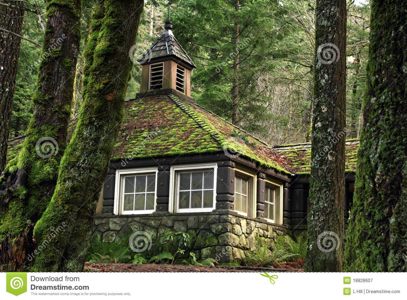 Mossy country stone cottage in the woods royalty free for Small stone cottage