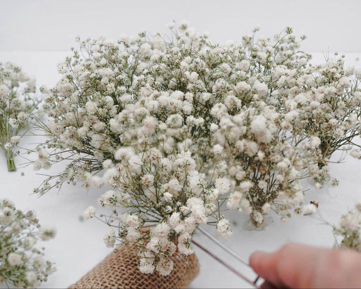 Baby Breath Flowers In 2020 Baby S Breath Wedding Flowers Babys Breath Flowers For Sale