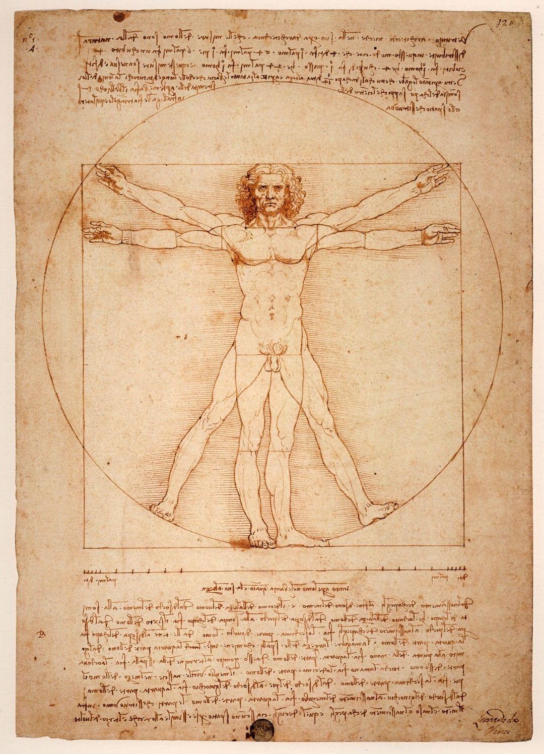 $11.95 AUD - Original Vitruvian Man Leonardo Da Vinci Wall Art Print ...