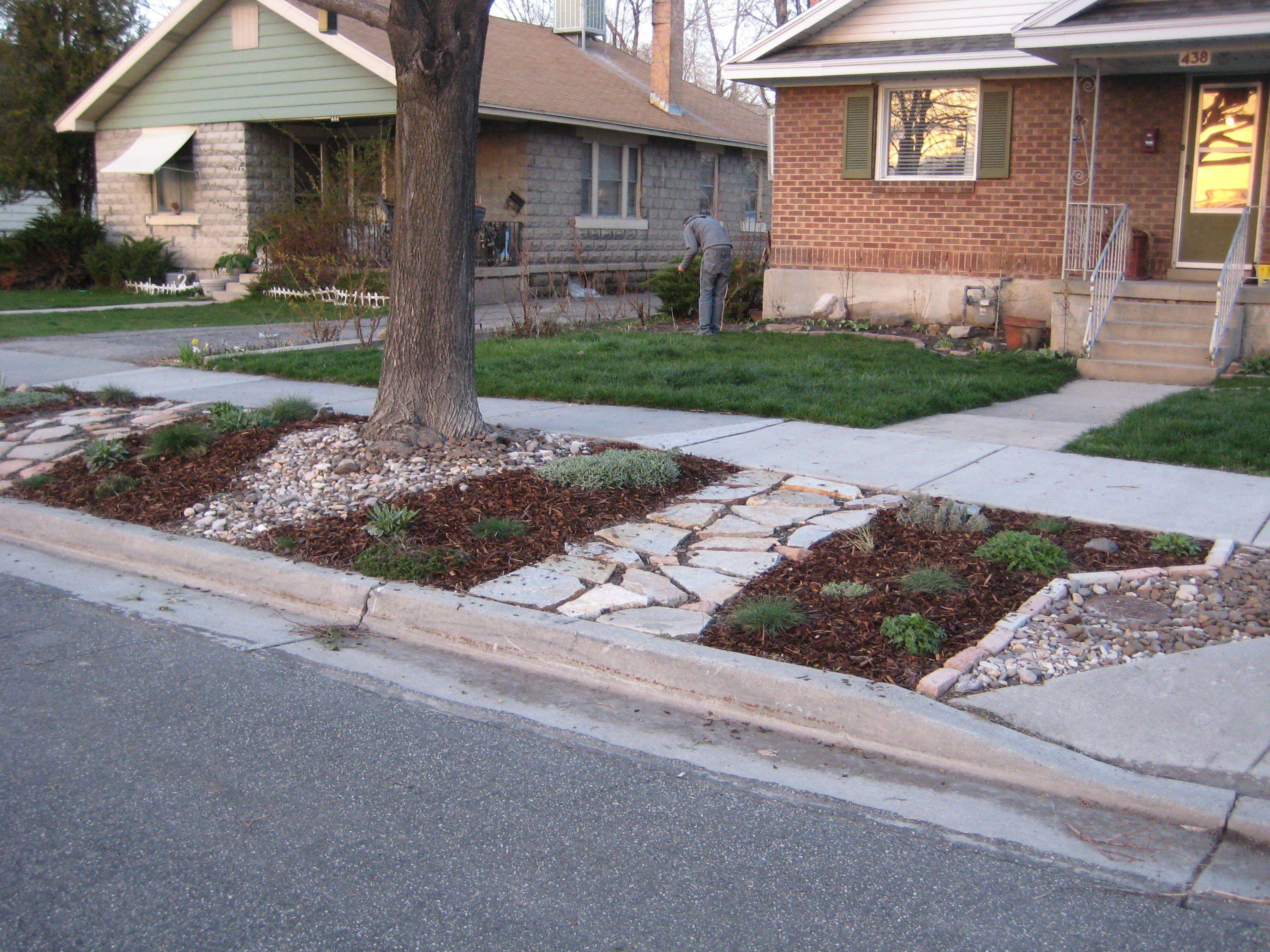 Revisiting The Parking Strip Sidewalk Landscaping Yard