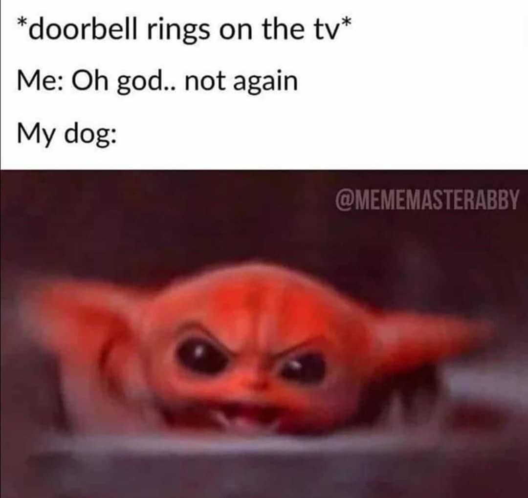 Pin By Gwyn Pearson On Funnies In 2020 Funny Dog Memes Funny Animal Memes Funny Relatable Memes