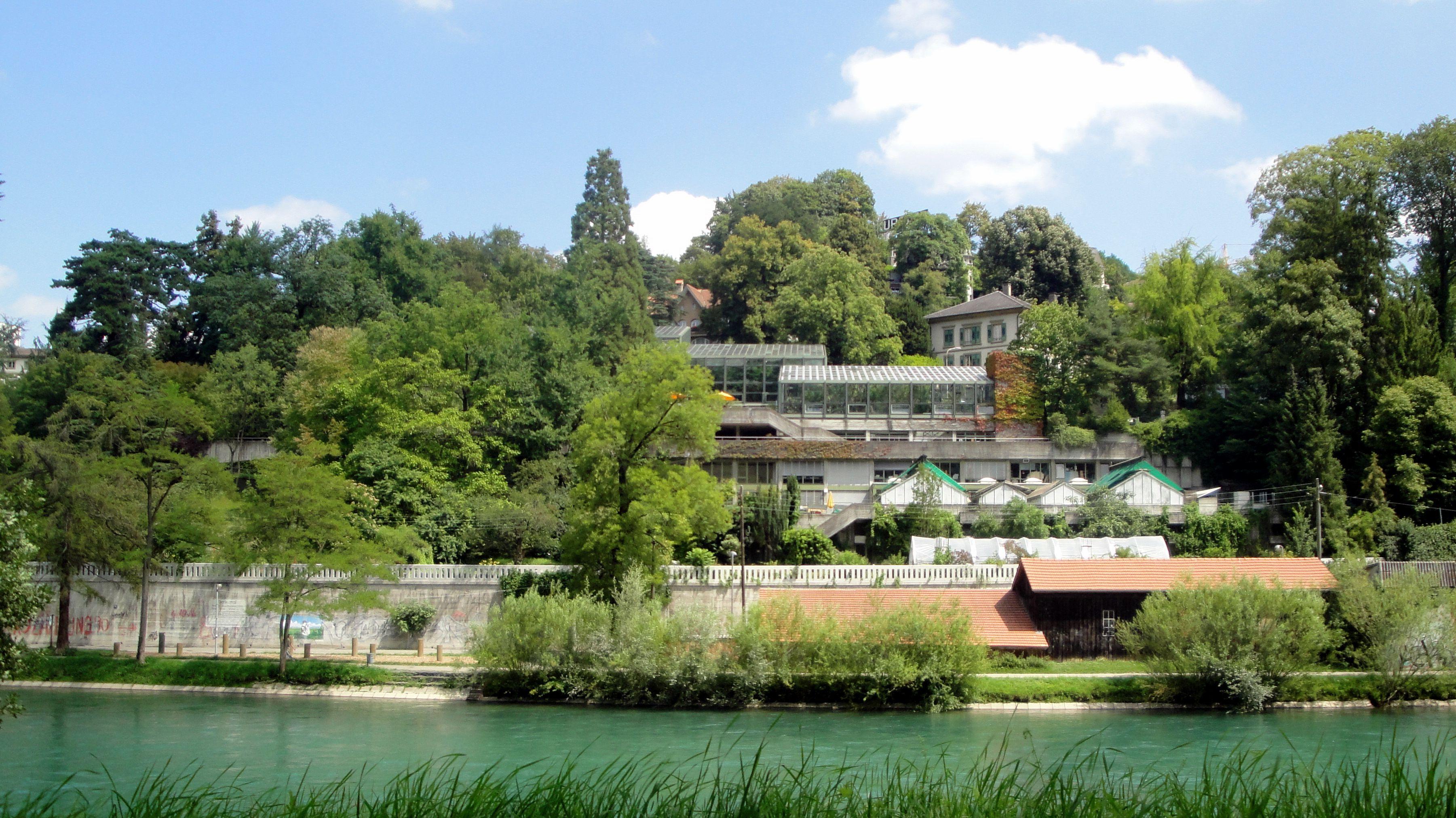 Top 20 Things To Do In Bern Botanic Garden Stuff To Do Things To Do Botanical Gardens