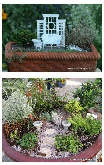 Bonitos Plantas, Terrarios y Jardines miniatura! Pinterest