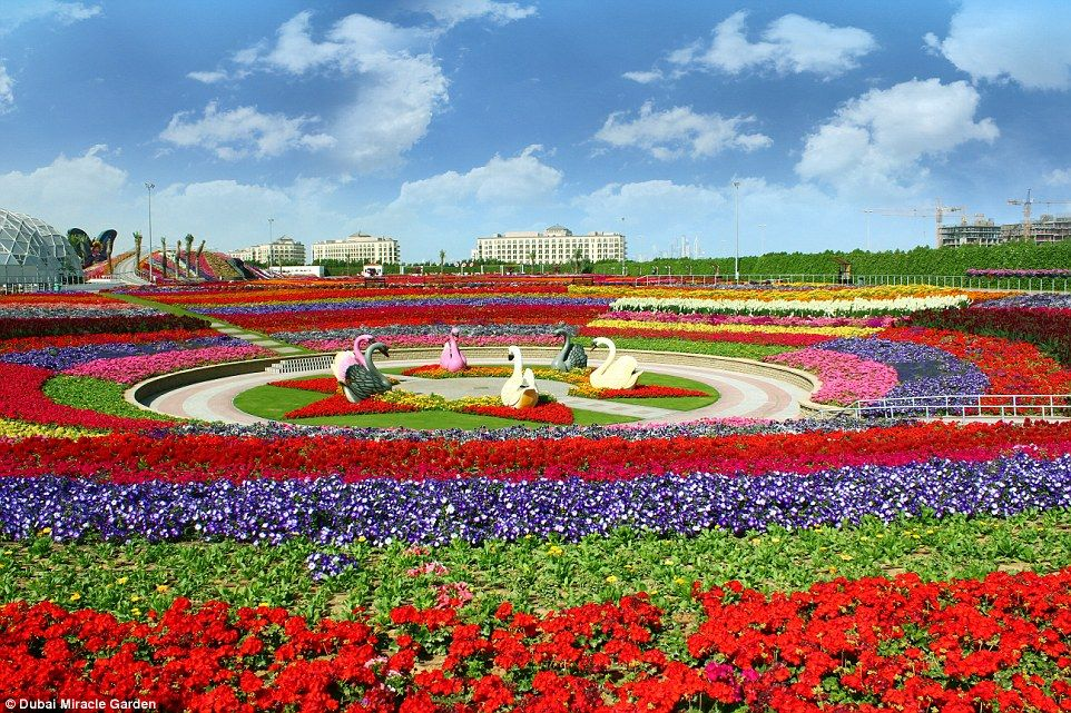 Beautiful Flower Gardens Of The World inside the world's largest flower garden in the middle of a