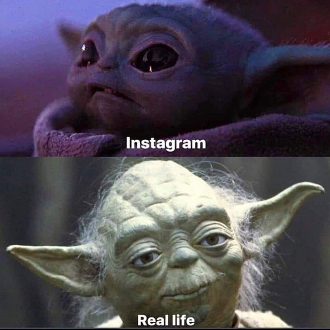 7 096 Likes 60 Comments Cameron Mattson Teamstarwars On Instagram I Can Relate Teamstarwars Bosslogic Disney Yoda Meme Funny Memes Star Wars Jokes