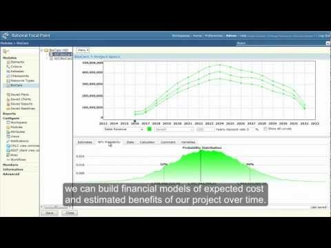 Investment Analysis in IBM Rational Focal Point (RFP) v652 - investment analysis