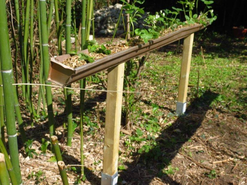 construire une gouttière à fraises le jardin Pinterest