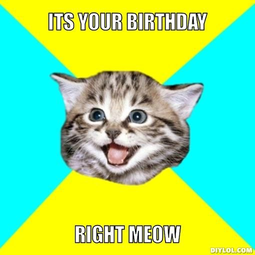 Memes For > Funny Birthday Cat Memes | Thoughtful ideas ...
