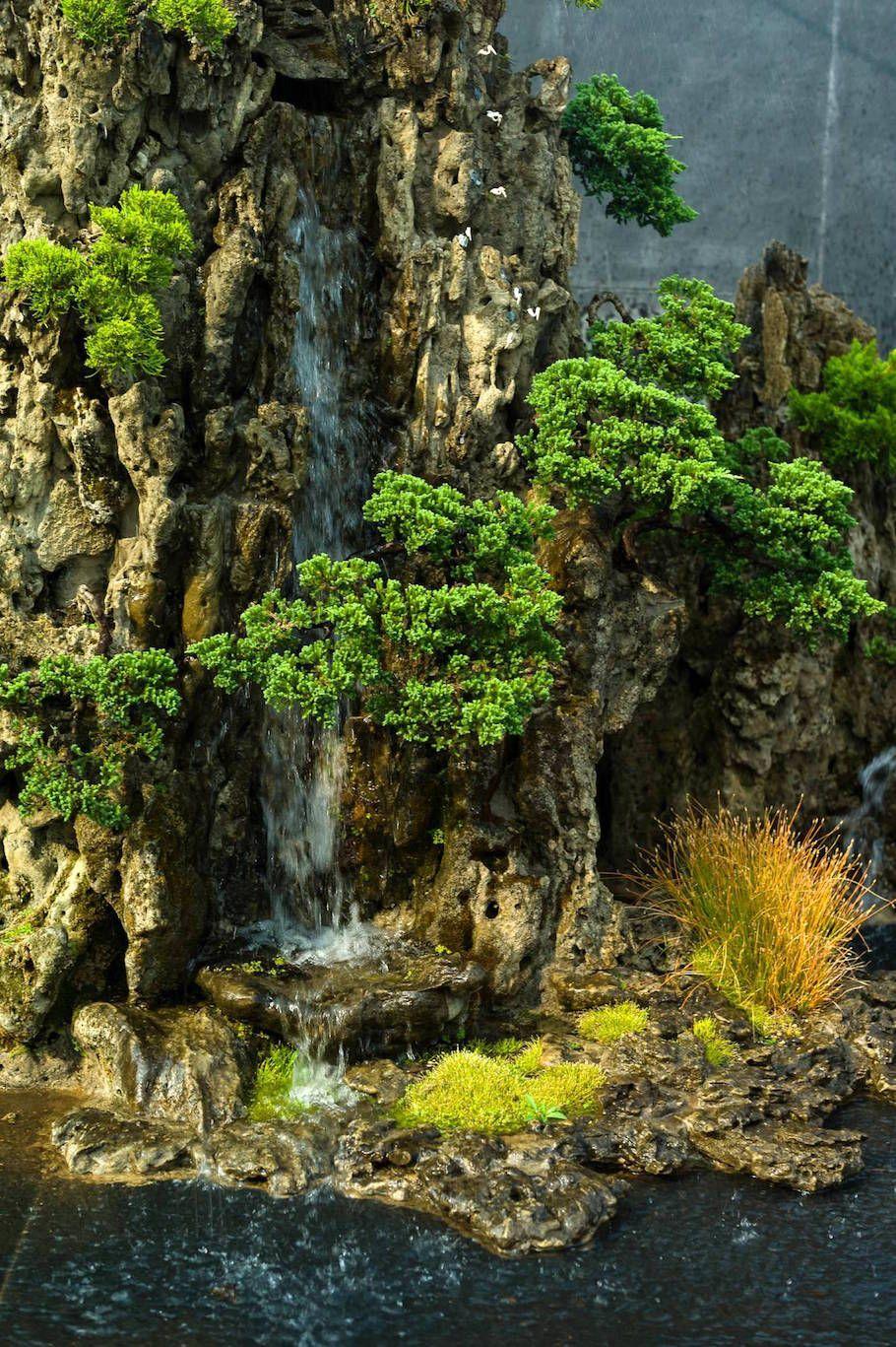 Árboles Bonsai, Bosque