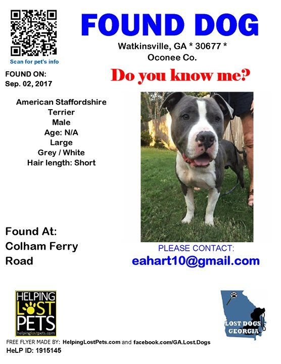 Do you know this Dog? #Watkinsville (Colham Ferry Road)  #GA 30677 #Oconee Co.  #Found #Dog 09-02-2017! Male https://t.co/68OFG5qJhN