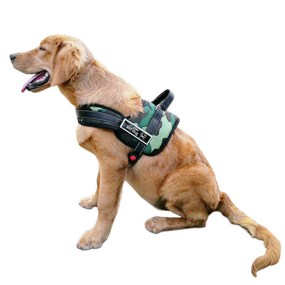 Dog Harness Soft Leash Padded No Pull Dog Harness With Handle