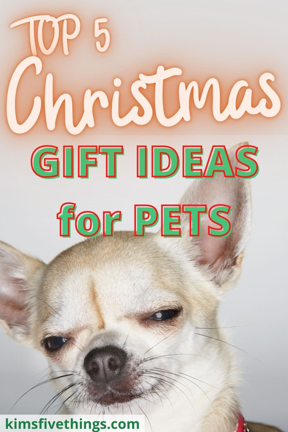 Christmas + Presents + Dogs + Cats + Pets + 2020 Pin on Best Of Gifts