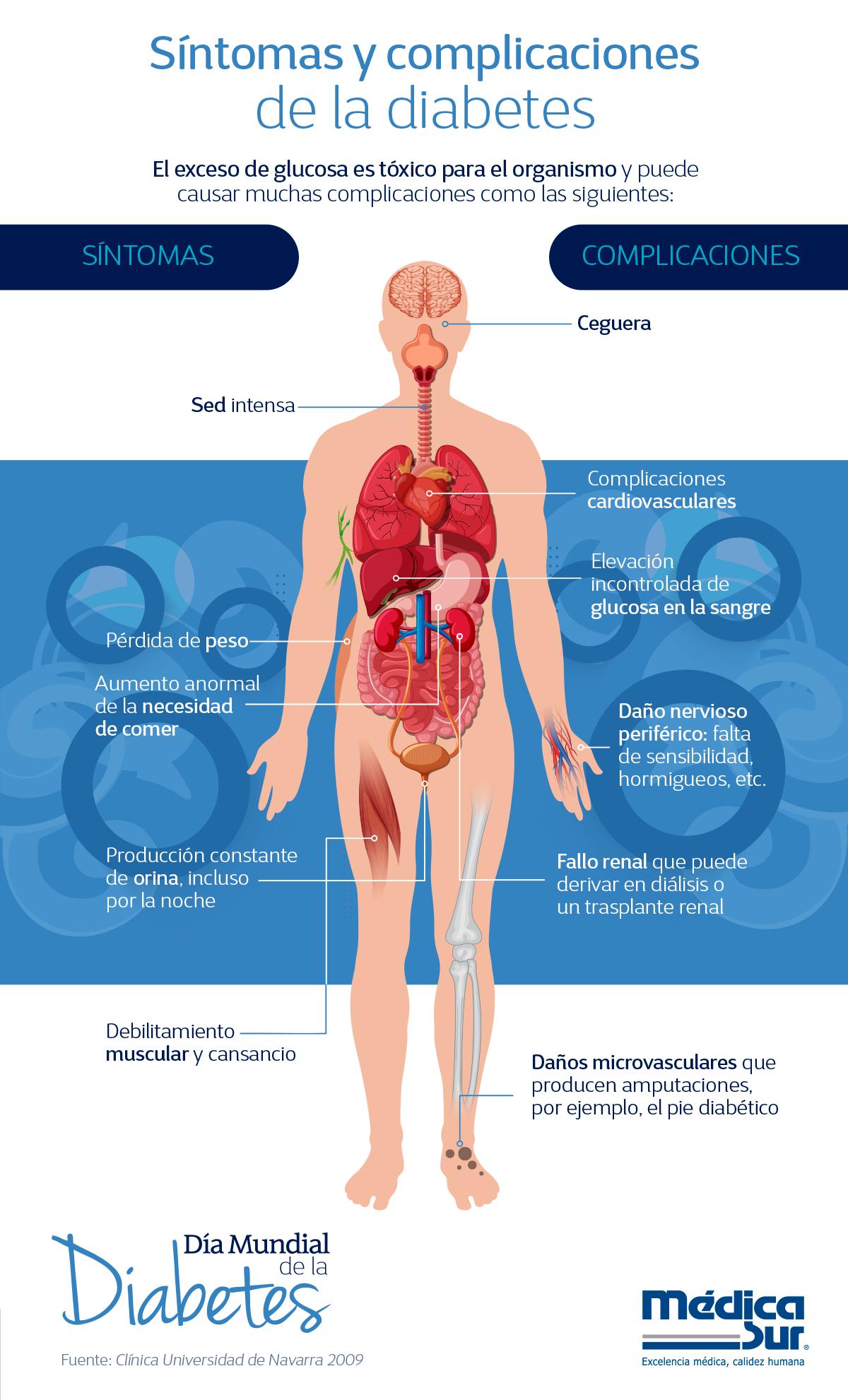 la diabetes del órgano afecta