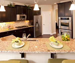 Pulte Homes Unveils Consumer-Inspired Home Designs at Harmony on the ...