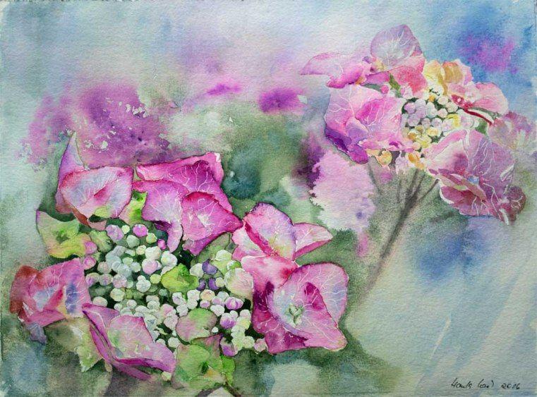 Sommerfarben – ein Hortensien Aquarell von Hanka Koebsch | Aufgeblüht (c) ein Hortensien Aquarell von Hanka Koebsch