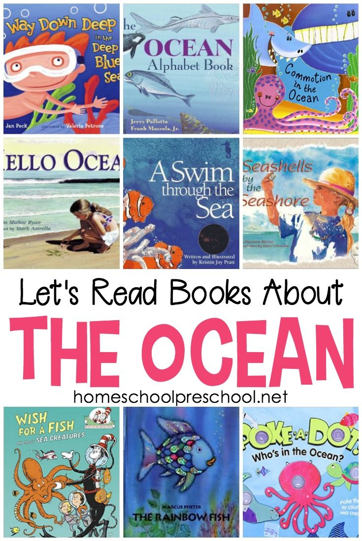 30 Of Our Very Favorite Picture Books About The Ocean