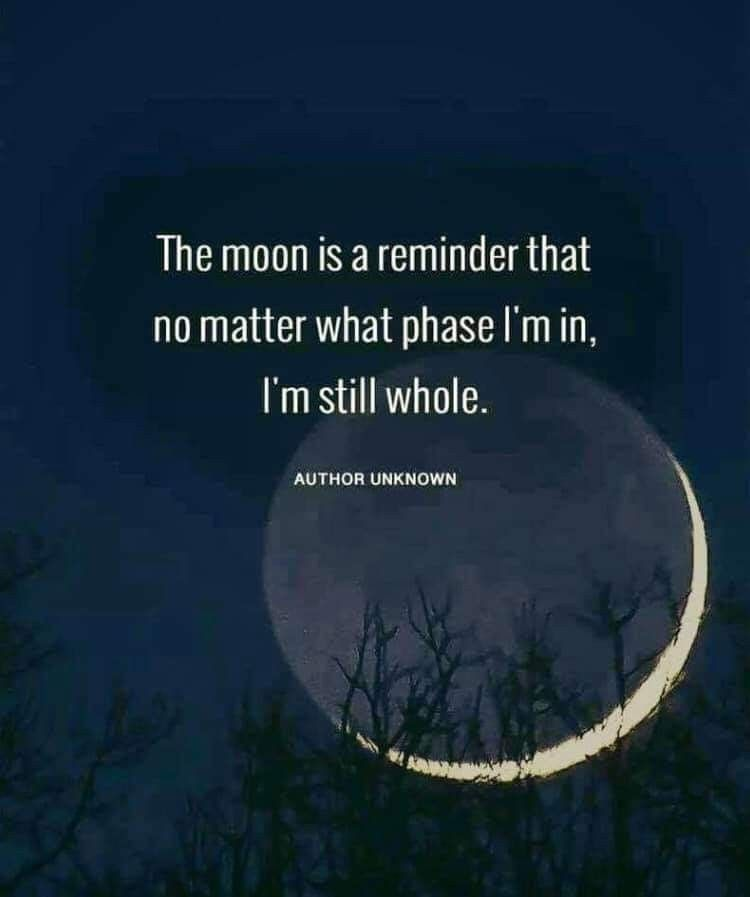 the moon is a reminder that no matter what phase i'm in, i