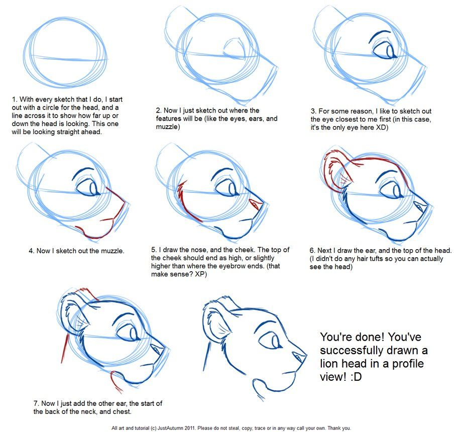 How To Draw: Feline Profile Tutorial By *justautumn On Deviantart