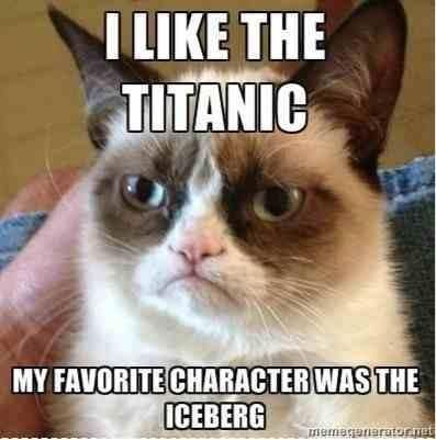 I Like The Titanic Funny Memes Jokes Meme Lol Funny Quotes Comedy - 20 hilarious cat photos captioned comedians