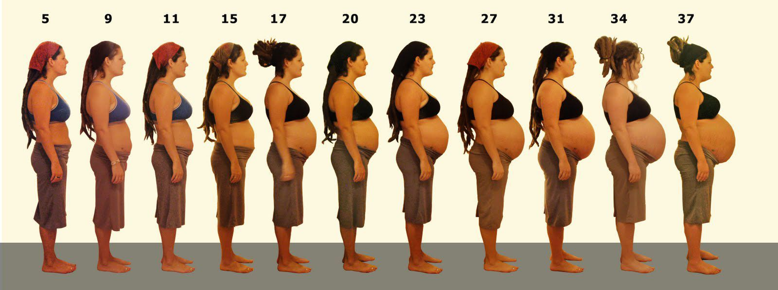 body changes during pregnancy week by week photos - Google Search