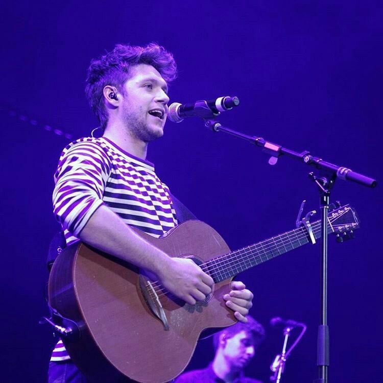 Niall at Chicago's Summer Bash!